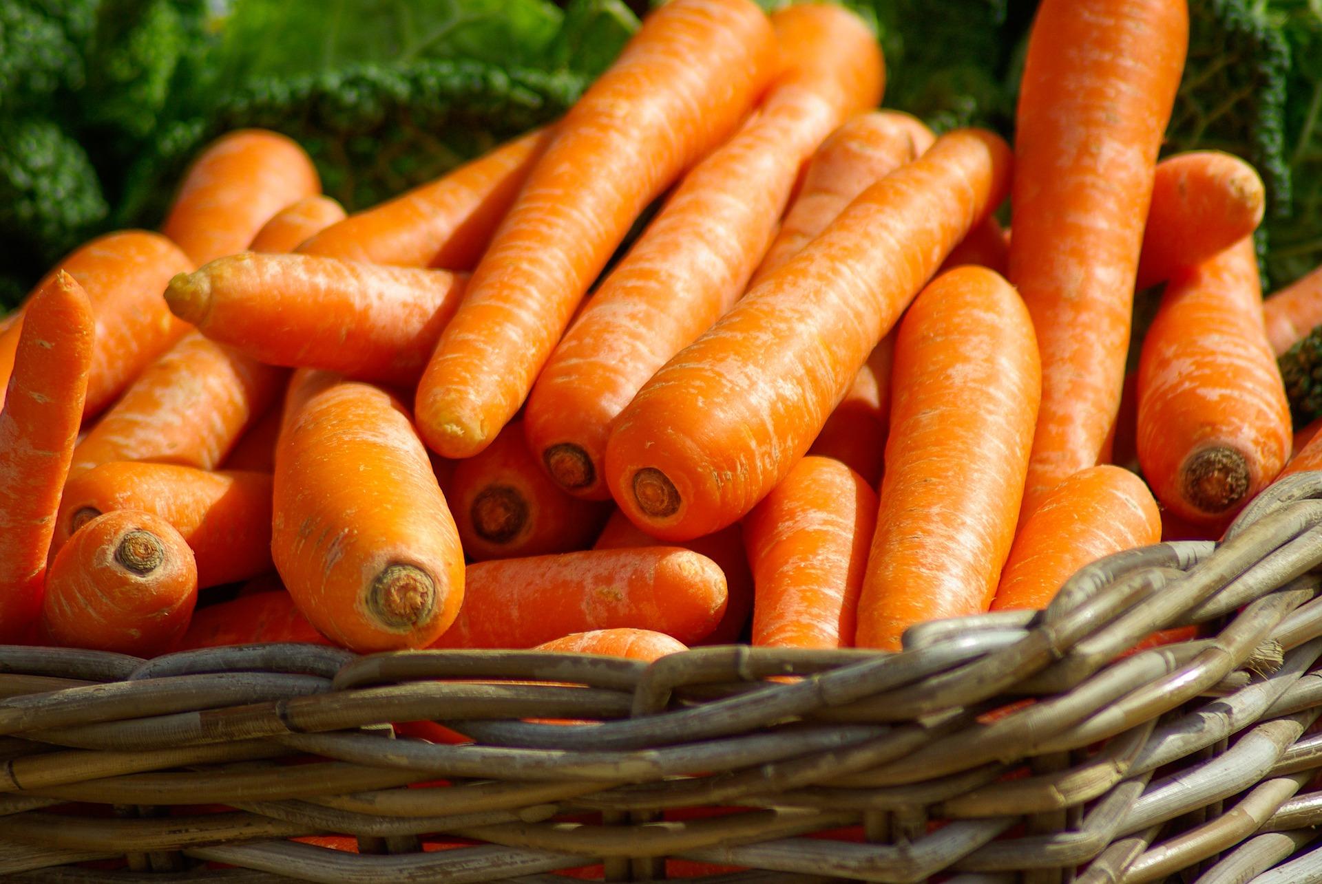 Temps de cuisson des carottes : tout savoir pour préparer de délicieux plats